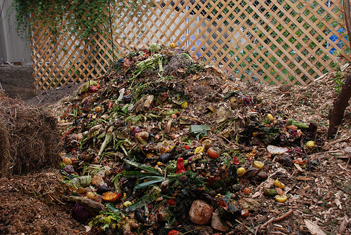 Sustainability 101 Building A Compost Pile Insteading
