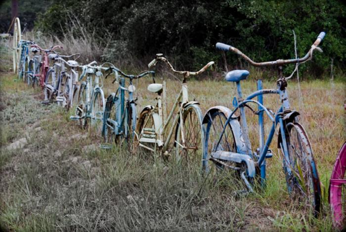 bicycle reuse