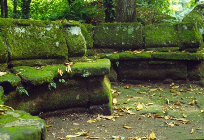 moss bench