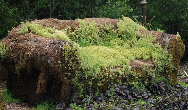 moss couch