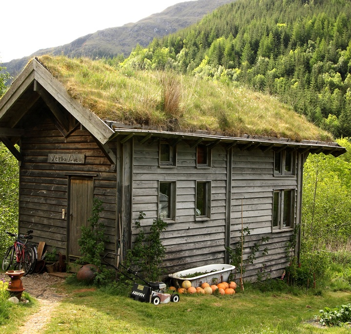cabin with green roof