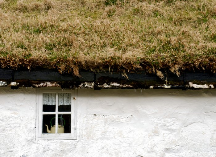 green roofed house
