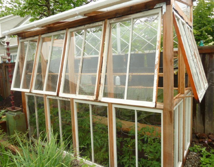 greenhouse made of old windows