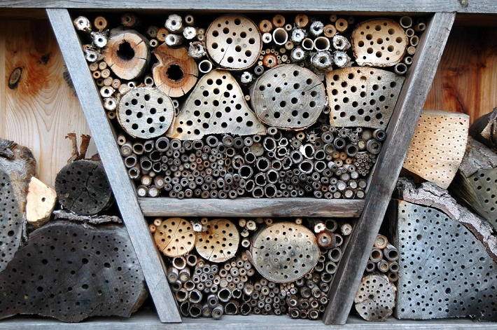 Insect Hotel • Insteading on beehive plans and designs, box house designs, food designs, bird designs, luxury pool house designs, signs designs, cat house designs,
