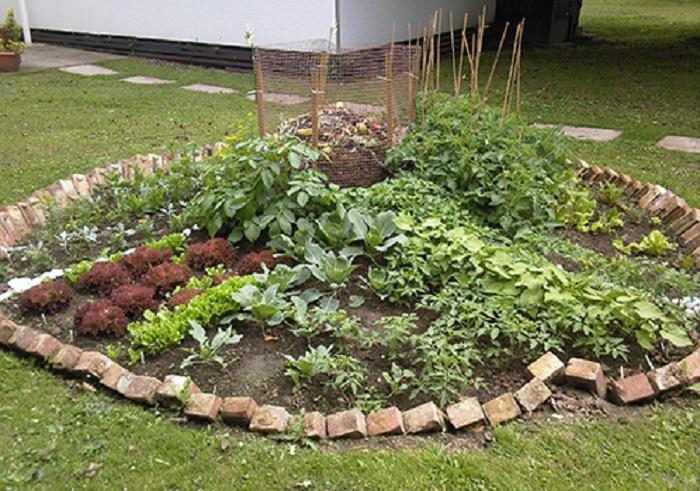 Charmant Keyhole Garden