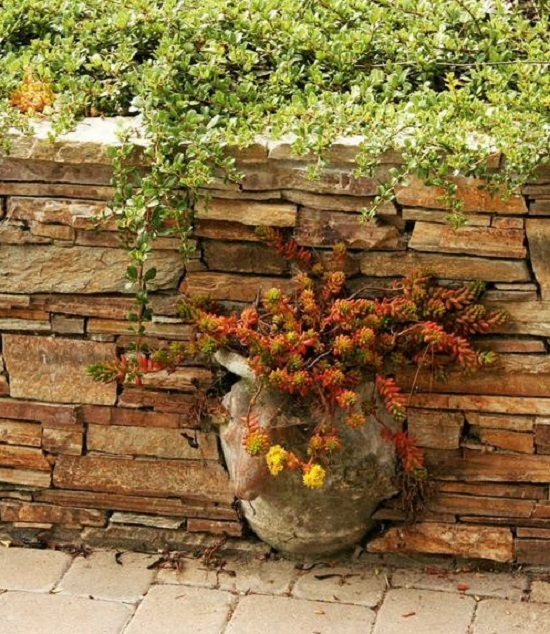 stone wall with potted plant