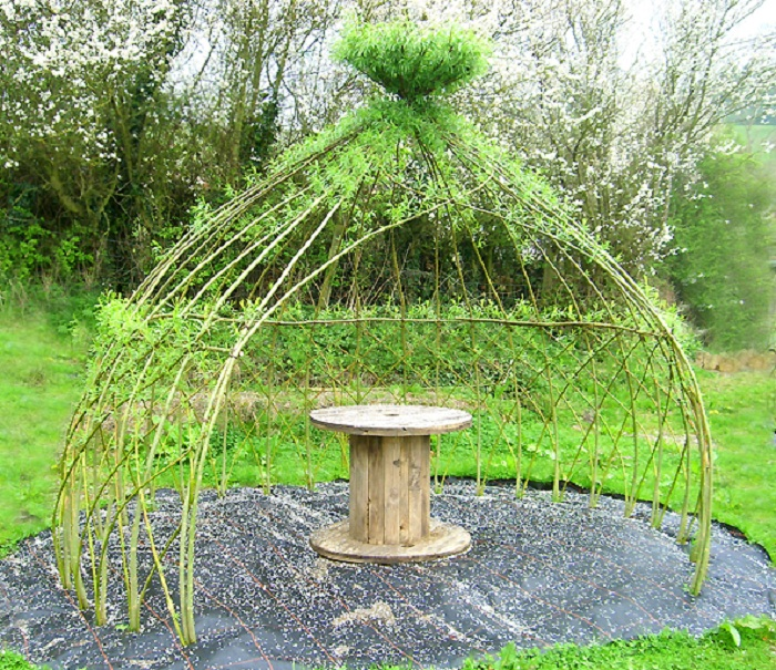 living willow arbor