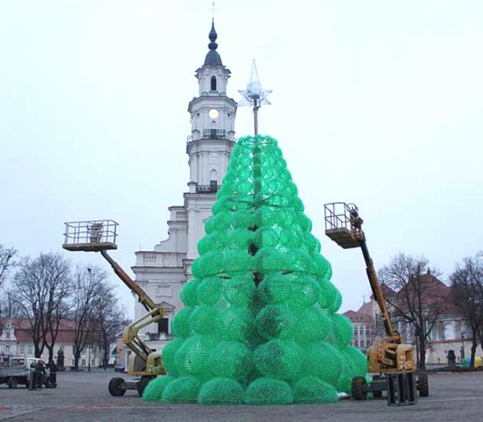 Try An Eco Friendly Christmas Tree • Insteading