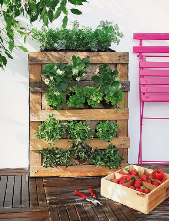 High Quality Herb Wall. Pallet Herb Garden.