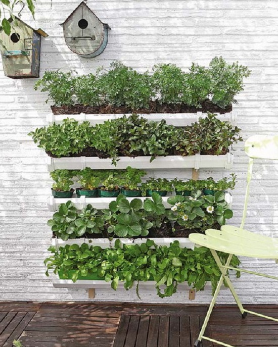 Awesome Herb Wall. Gutter Herb Garden.