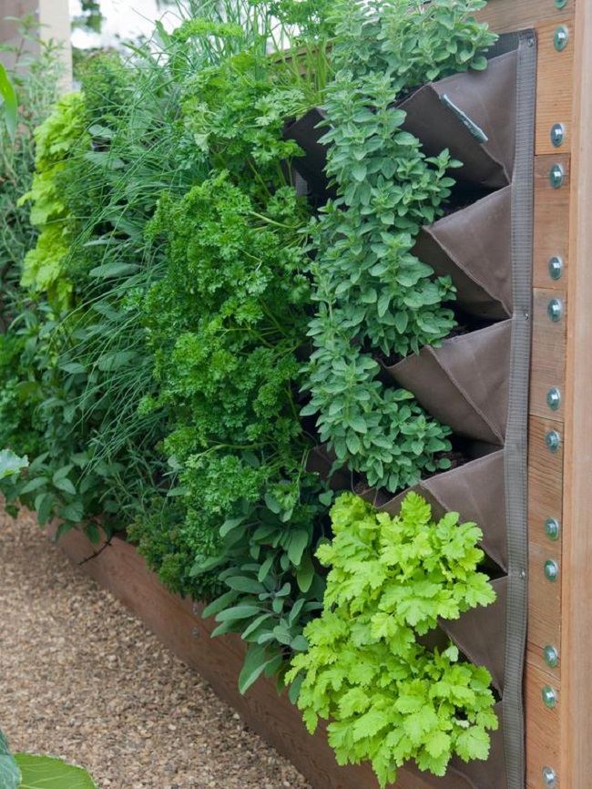 Vertical Herb Garden Insteading
