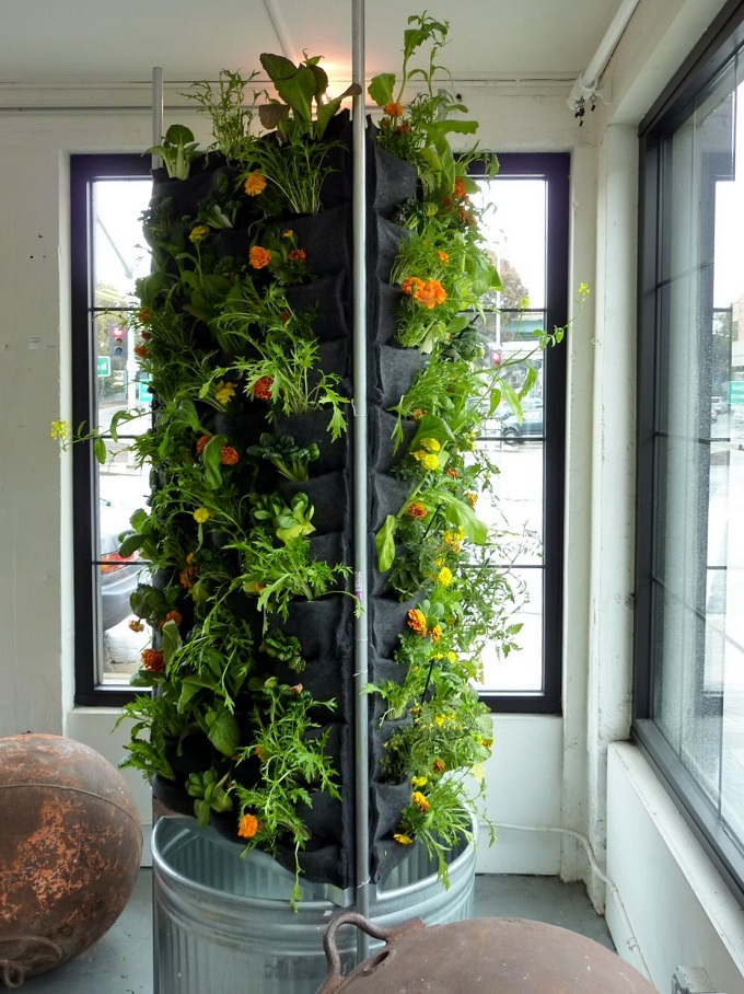 Vertical Herb Garden Aquaponic Vegetable