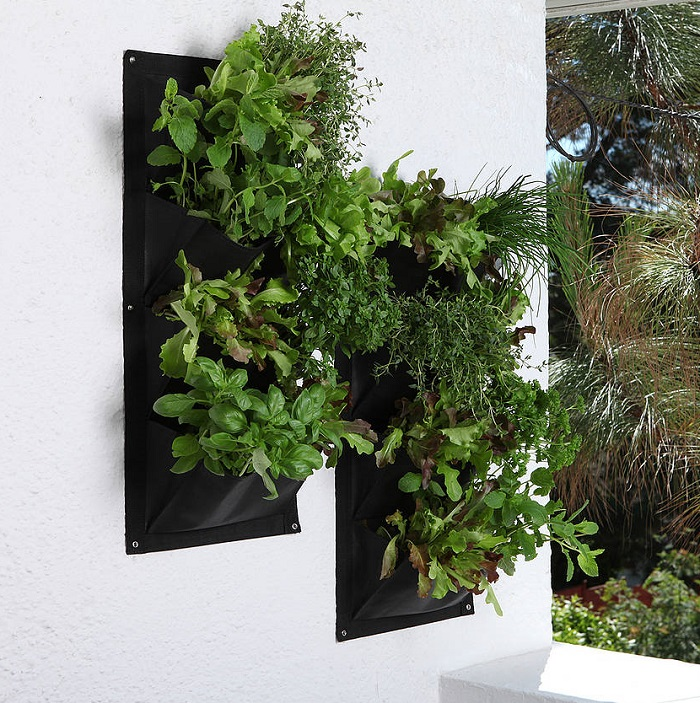 5 Pocket Herb Garden Wall