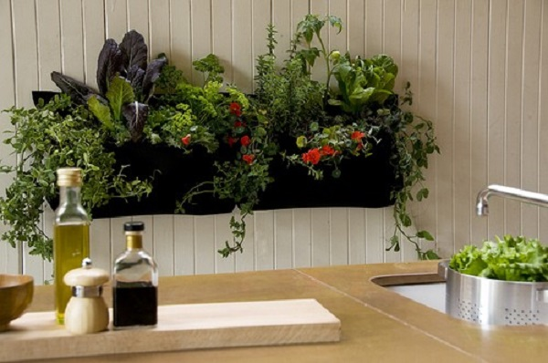Herb Wall. Pocket Wall Planter. Woolly Pocket Makes Indoor And Outdoor  Planters. Two Wally Ones Or One Wally Three. Woollypocket.com