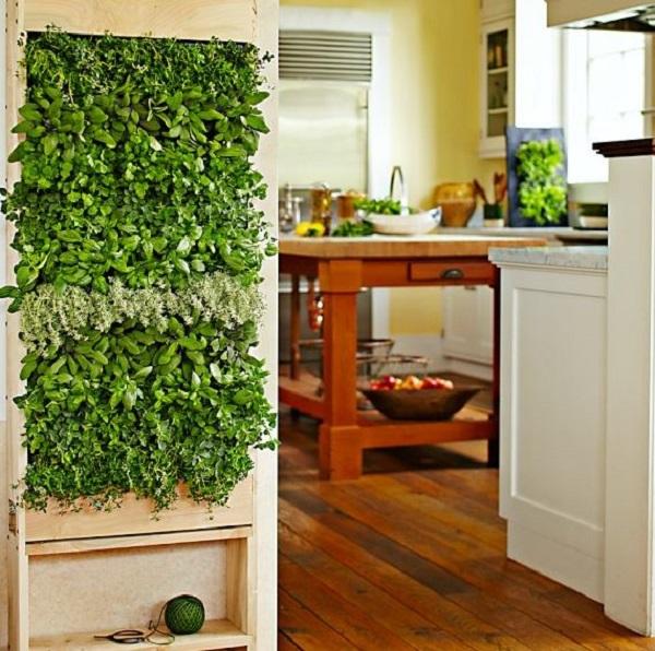 20 Indoor Vertical Herb Garden Wall