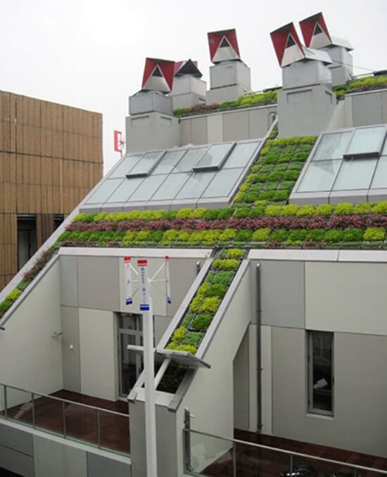 Urban Amp Institutional Green Roofs Insteading